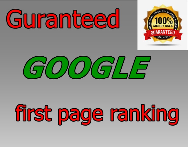 Rank your website in GOOGLE first page,  guranteed