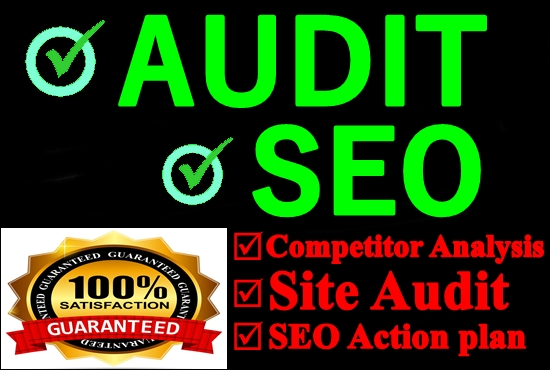 I will do an SEO audit of your website