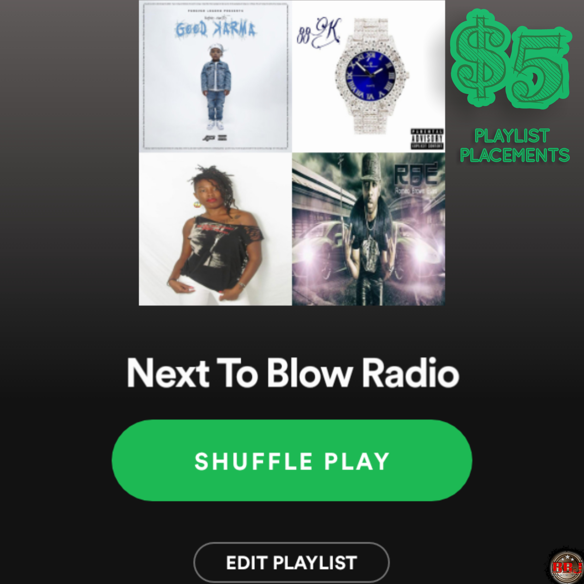 2wk Playlist Placements add 1 song to active playlist organically boost streams & fans