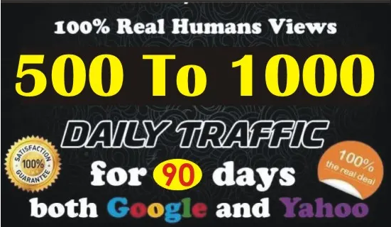 I Will Drive Real Organic Targeted Web Traffic For 90 Days