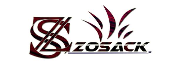 Professional Graphic & Logo Designer