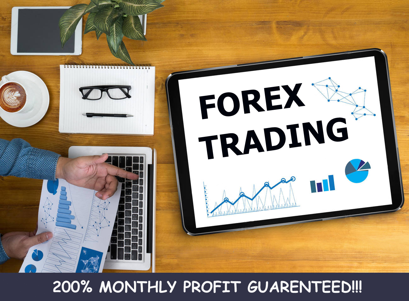 I'll provide fully automatic Forex trading system