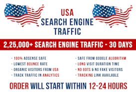 I will send USA keyword targeted organic traffic from search engine