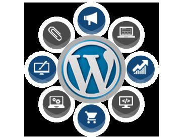 I will do wordpress website design