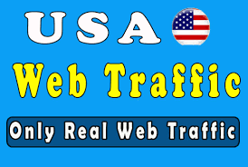 Promote Your Product In High 90,000 Real Traffic From twitter instagram facebook linkedin for