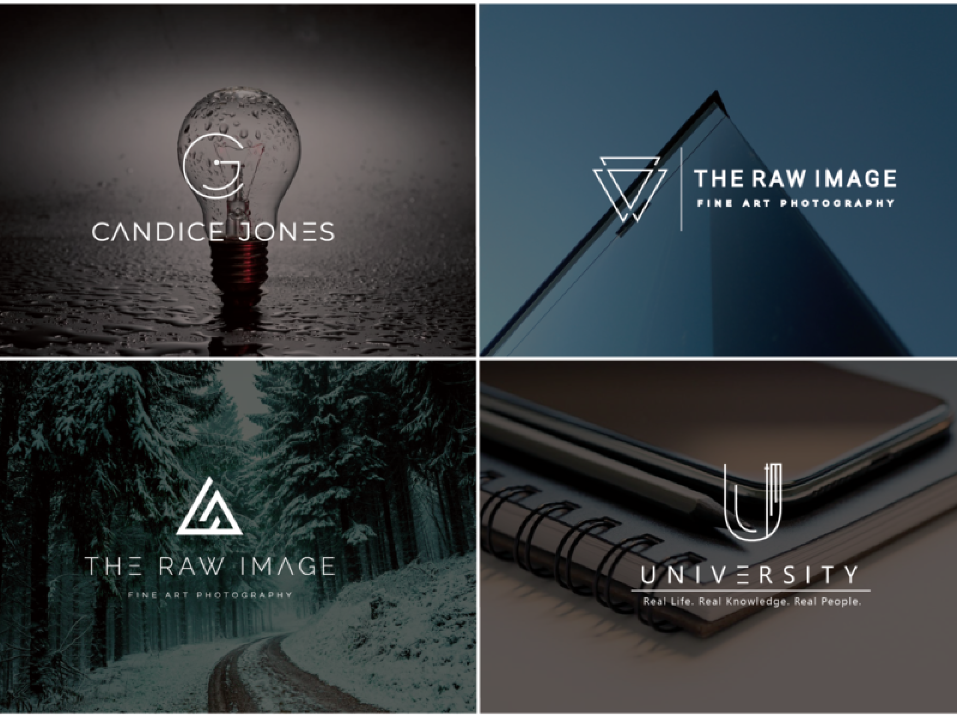 I will design a versatile logo for your brand or company