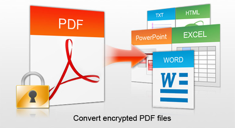 I will convert 20 PDF files to many other formats