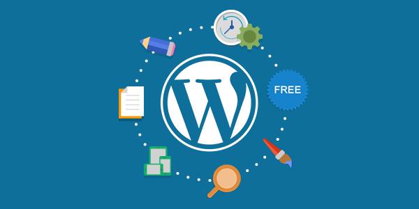 I will design a responsive professional WordPress Website