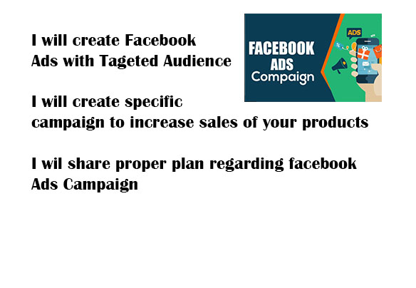 I will create facebook ads with targeted Audience to increase sales