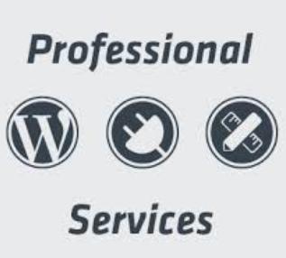 WordPress Website Development with The 7 Theme