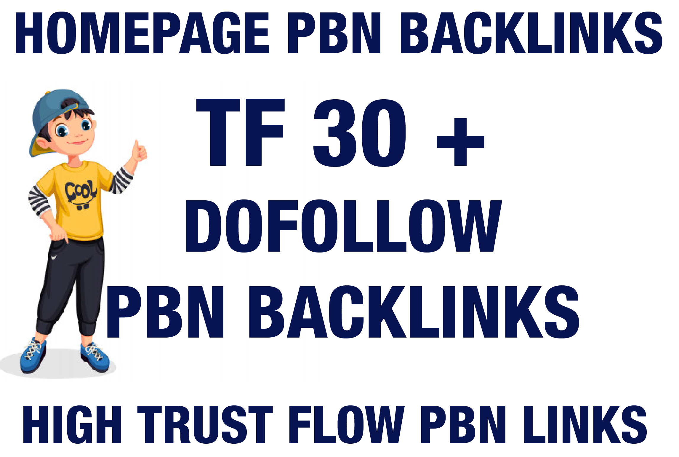 I will Provide Majestic TF 30 To 40 Plus 300 PBN Backlinks