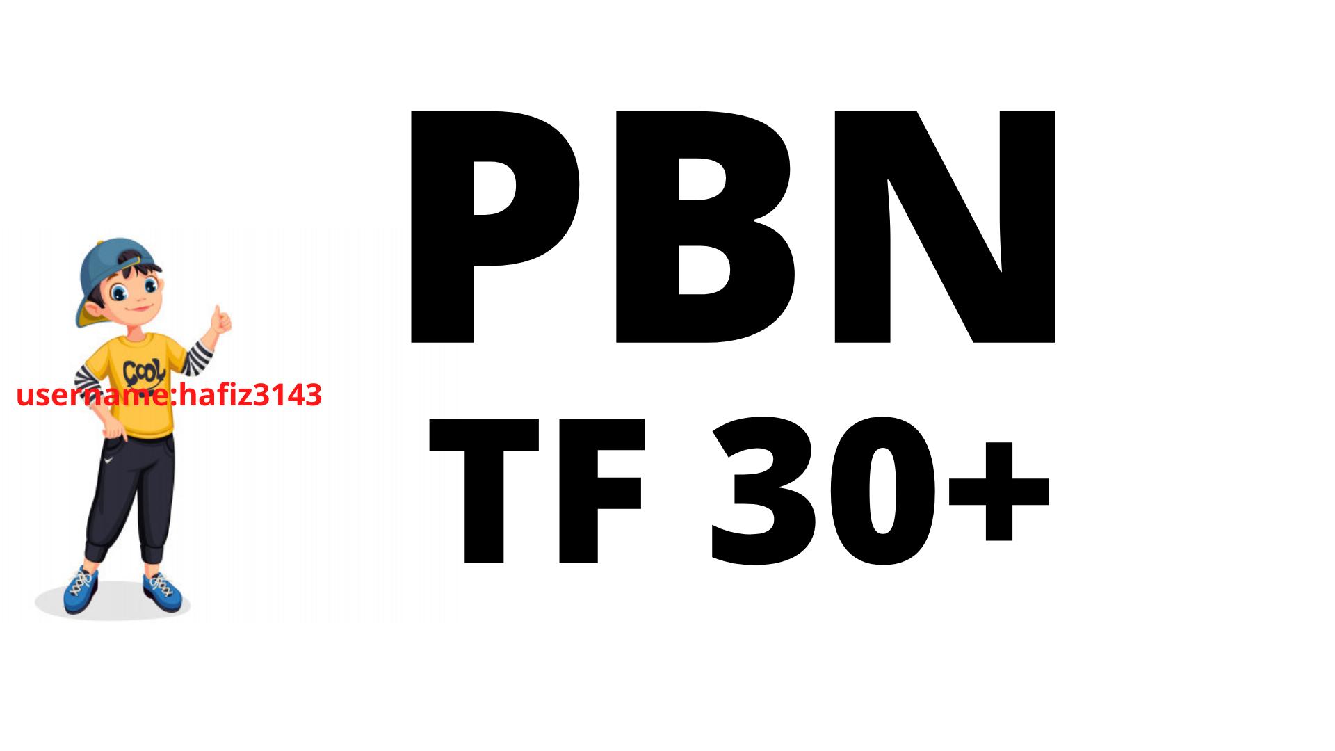 I will Provide 30 Homepage PBN TF 30 Plus PBN Backlinks
