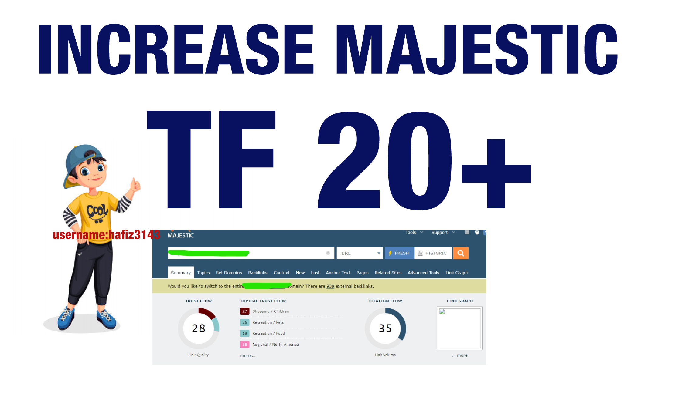 I will Help You To Increase Majestic Trust Flow URL Rating 20 Plus