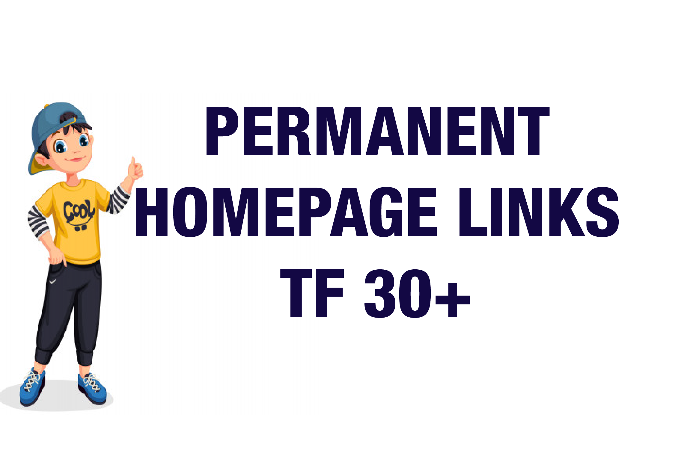 I will Provide Homepage PBN TF 30 Plus PBN Backlinks