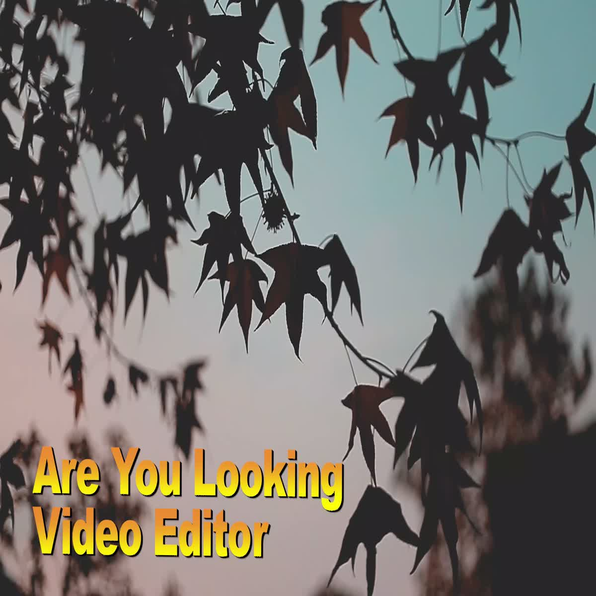 YouTube Intro Maker & YouTube Video Editor do professional video editing For All Kind Of Videos