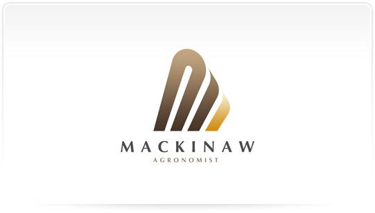 Design Professional Logo Business Unique