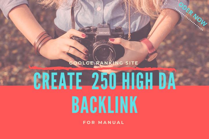 I will do 250 High DA profile backlinks manually for website