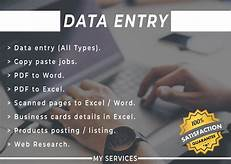 Reliable & Flexible Data Entry Assistant