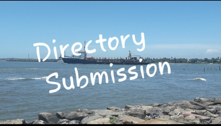 500 DIRECTORY SUBMISSION MANUALLY FOR YOUR SITE.