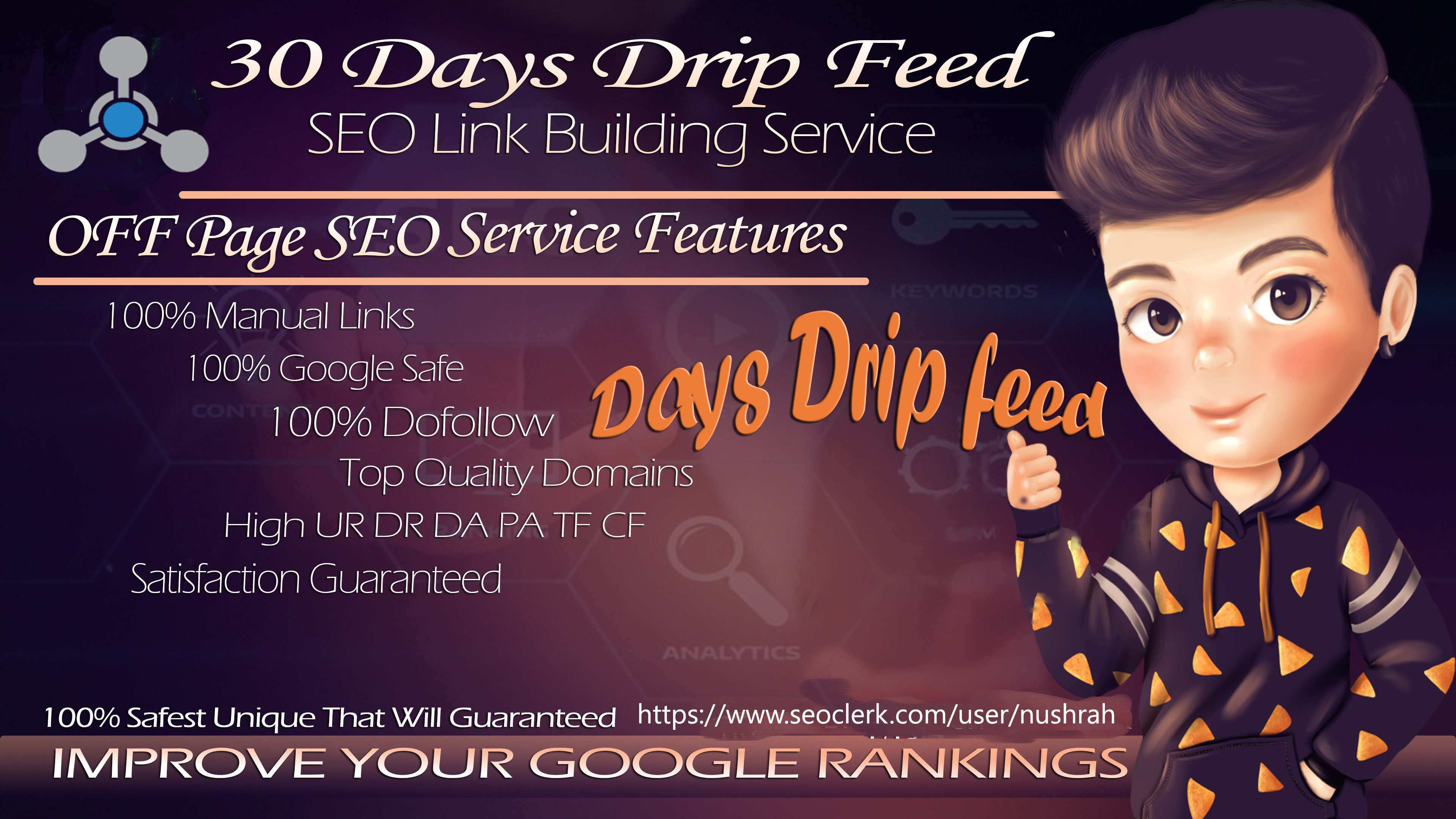 Monthly SEO Service- Rocket Your Ranking And Increase Domain Authority With High Quality Back links