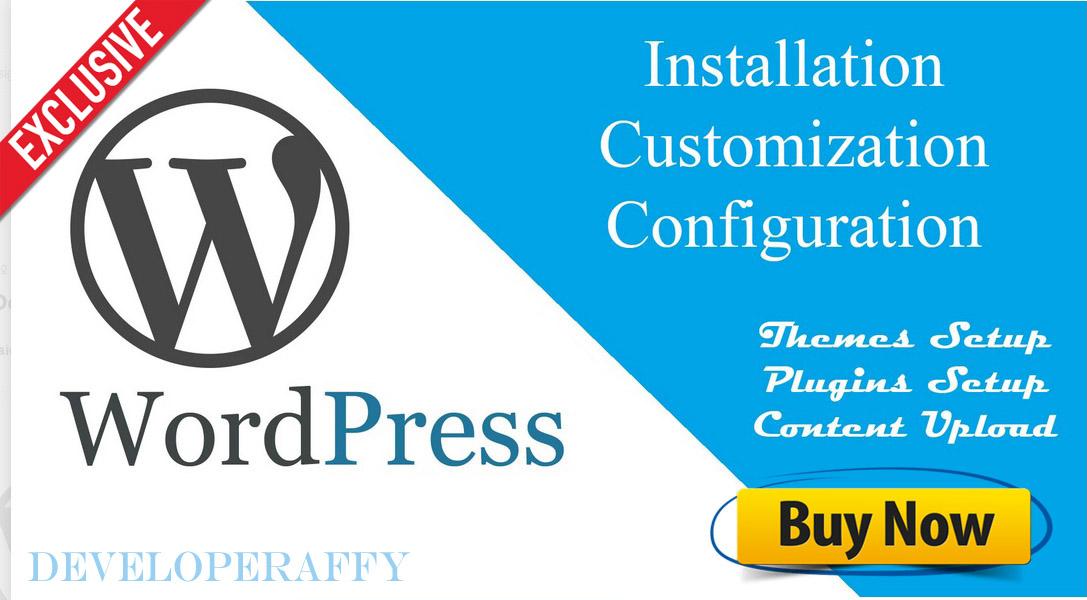 Install WordPress or setup WordPress theme