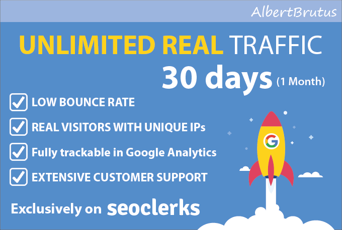 Drive real niche targeted web traffic to your website for 1 month