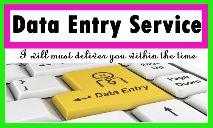 Professional Data Entry Operator