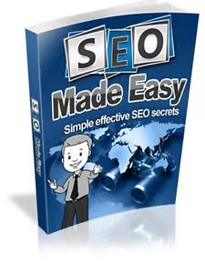 100% LEARN SEO TRICKS FOR PROFESSIONALS AND BEGINNERS