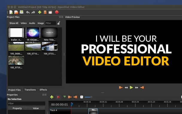 I will your professional video editor