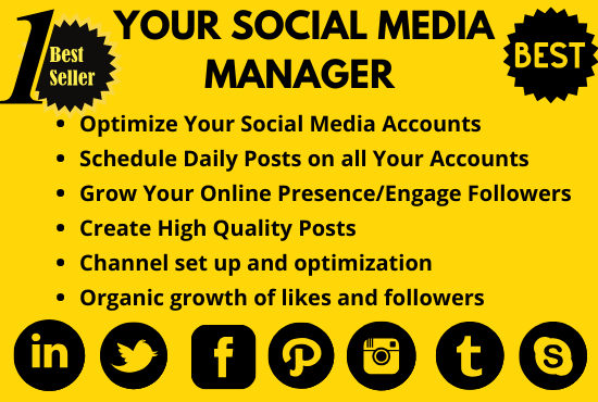I will be your social media manager and personal assistant