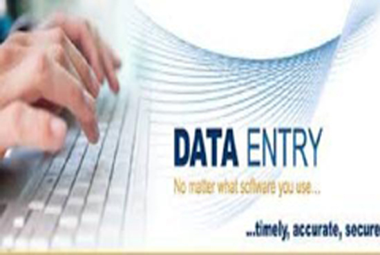 DATA ENTRY WORK IN MS WORD. MS EXCEL IMAGE TO PDF,  MS WORD TO PDF