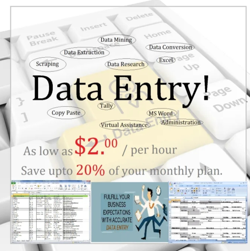 Data entry projects or file conversions