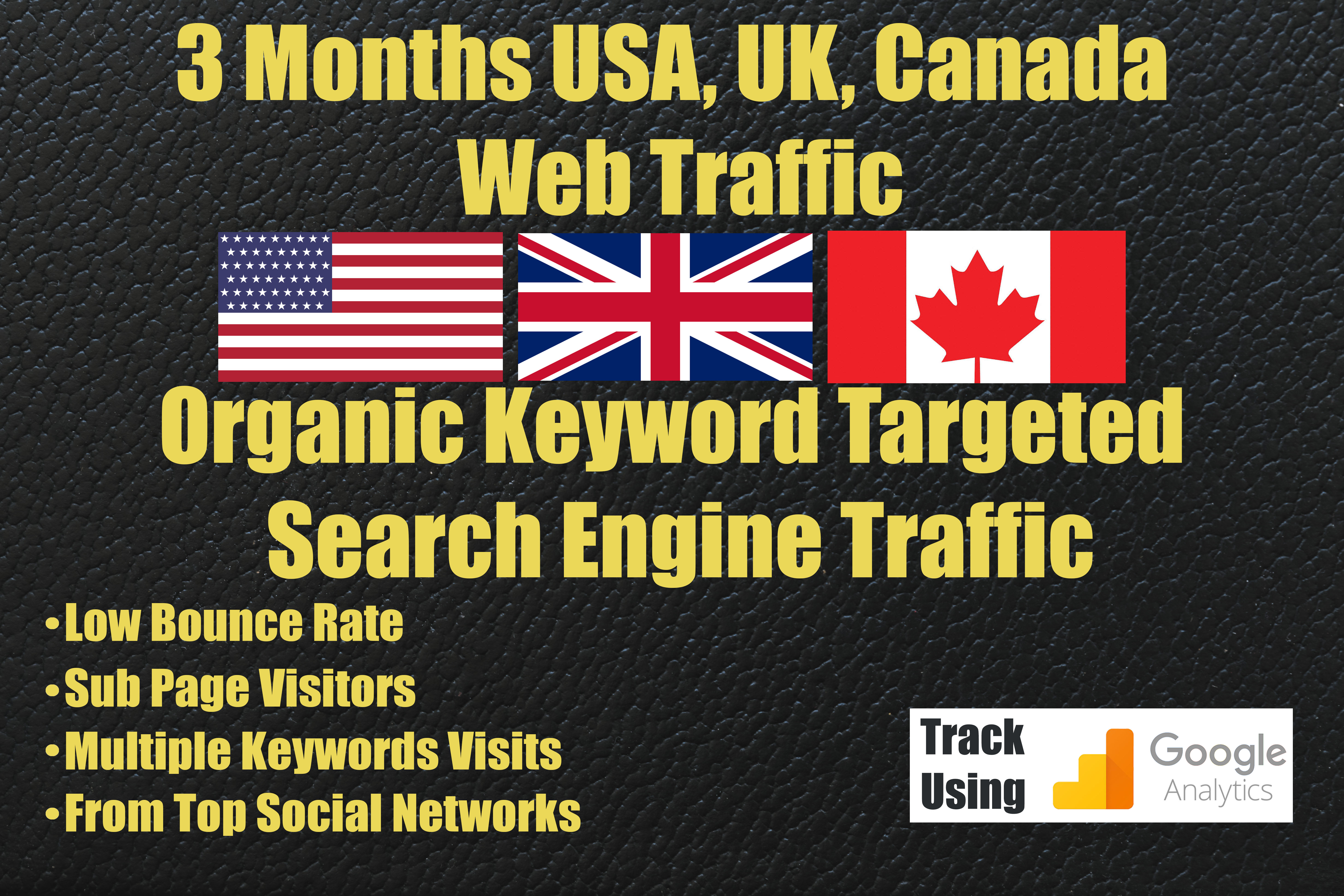 USA UK Canada Google Organic Traffic for 3 Months Non stop 24/7