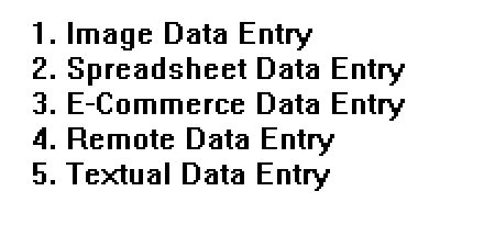 ANY TYPE DATA ENTRY ENGLISH, HINDI,  MS OFFICE,  EXCEL WORK.