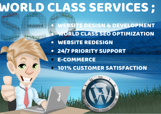 YOU NEED A PROFESSIONAL RESPONSIVE WORDPRESS WEBSITE