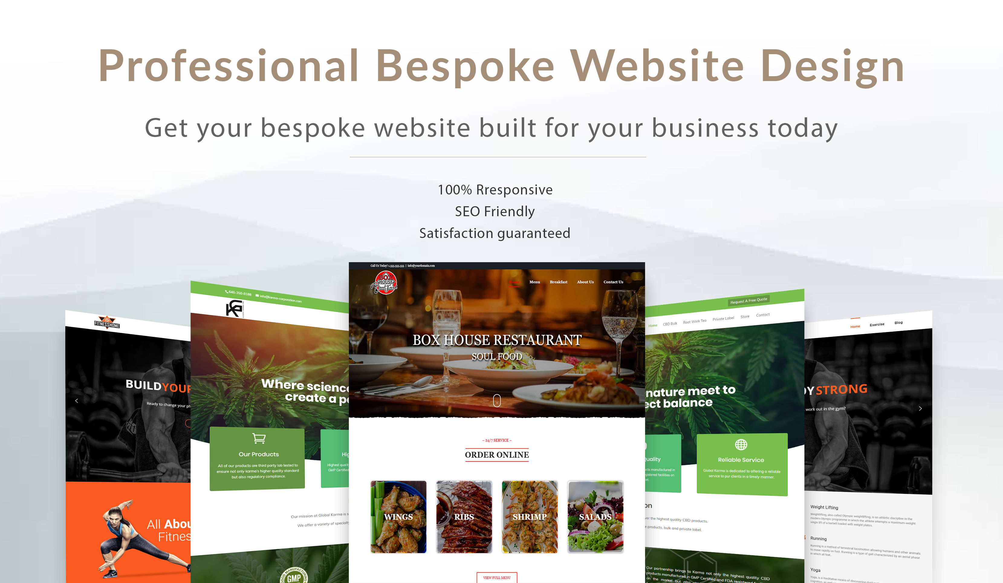 Build Responsive Wordpress Website Design Redesign Blog Fix and Customization