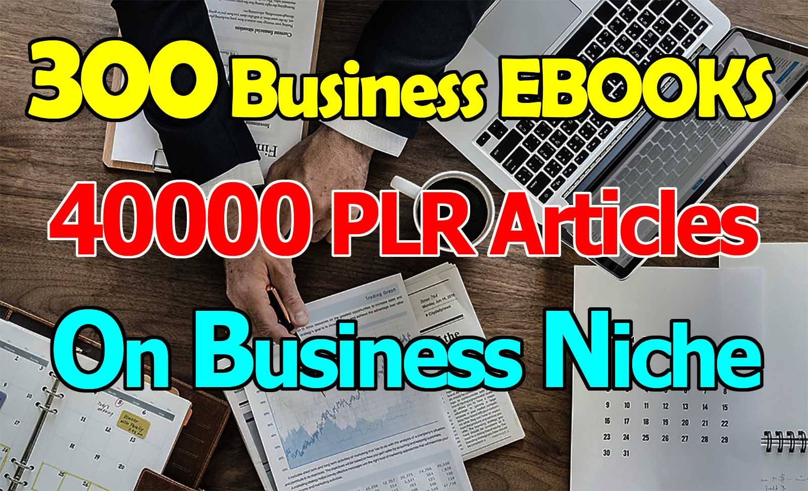Get 300 EBooks 40K PLR Articles On Business Niche