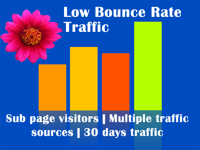 Professional Campaigns Traffic with Low Bounce Rate from USA