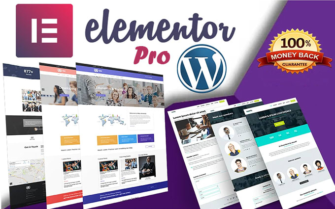 I will create your professional wordpress website