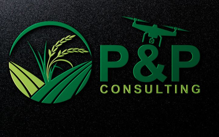 Create 3 professional logo for your business & company in 24 hours.
