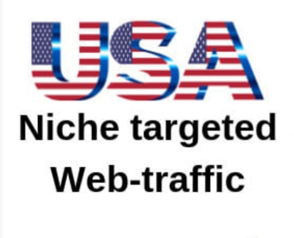 USA Targeted Traffic to your Website or Blog