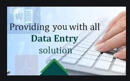 I will do all type of data entry work