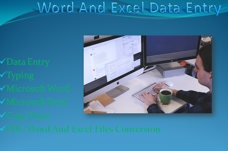 I will do an expert and a proficient data entry work