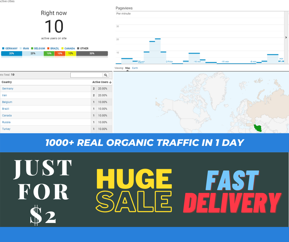 Real 1000+ Organic Traffic for Your Site in 1 Day