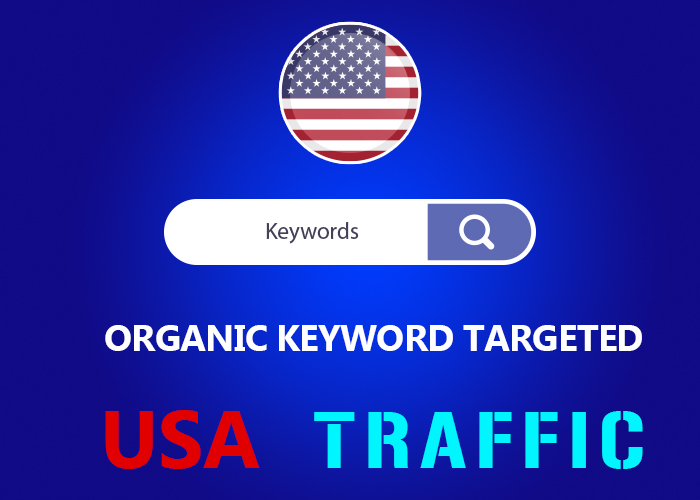 Send Organic keyword Targeted USA Real Traffic LIMITED OFFER