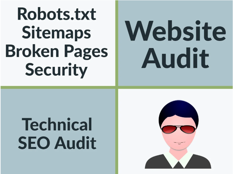 Give you a professional SEO audit report and send complete report