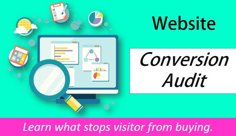 Perform Website Conversion Audit