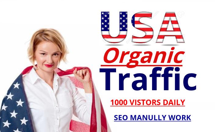 do USA Organic Traffic 10k real