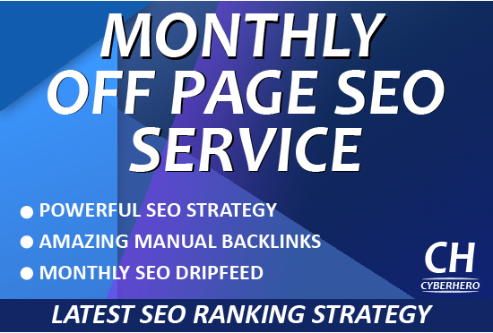 I will do monthly SEO service package manual link building