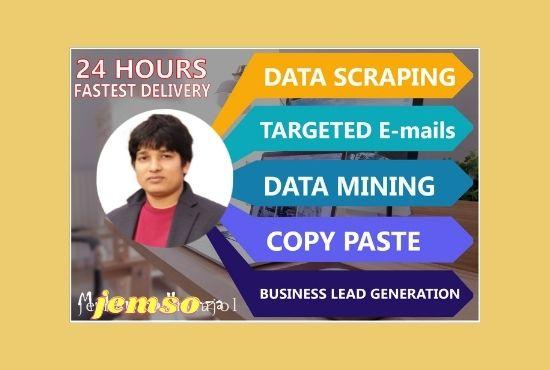 do the permanent data entry data mining data scraping copy paste job